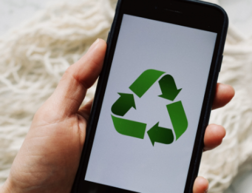 5 Tips to be a Sustainable Shopper, Conscious Consumer, and Reduce your Impact on the Earth